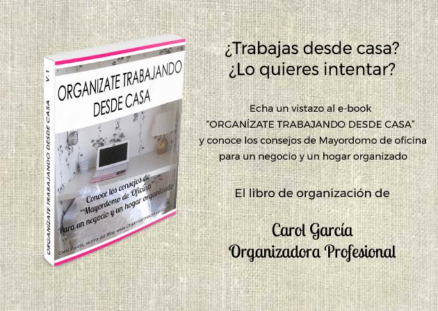 Libro organizadora profesional